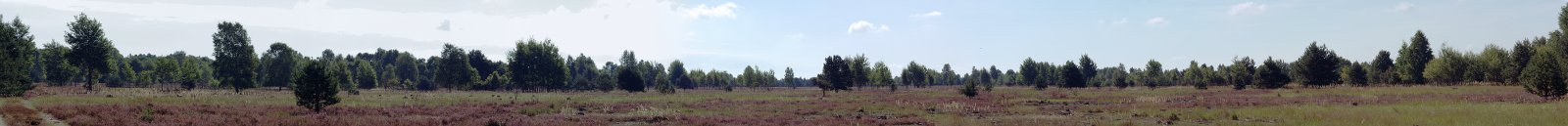 Kloster Himmelpfort, Erholungsort im Wald- und Seengebiet im Norden der Mark Brandenburg: Tangersdorfer Heide